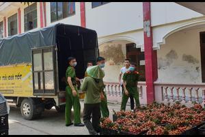 Xe tải chở hàng giá rẻ tại Vinh | Uy tín - chất lượng - giá rẻ